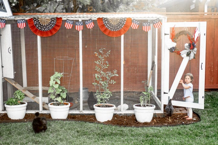 4th of July decorated chicken coop