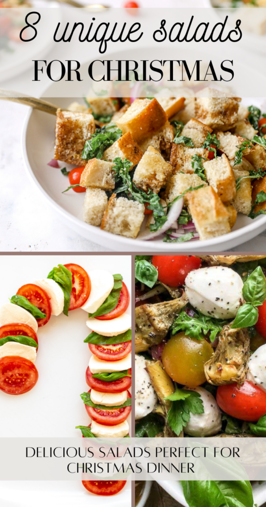 unique salads for Christmas pin image